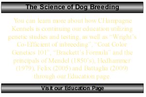 science of dog breeding side bars content template